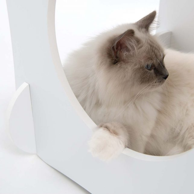 The Vesper Condo will take you and your cat back to the 70s with its stylish retro look