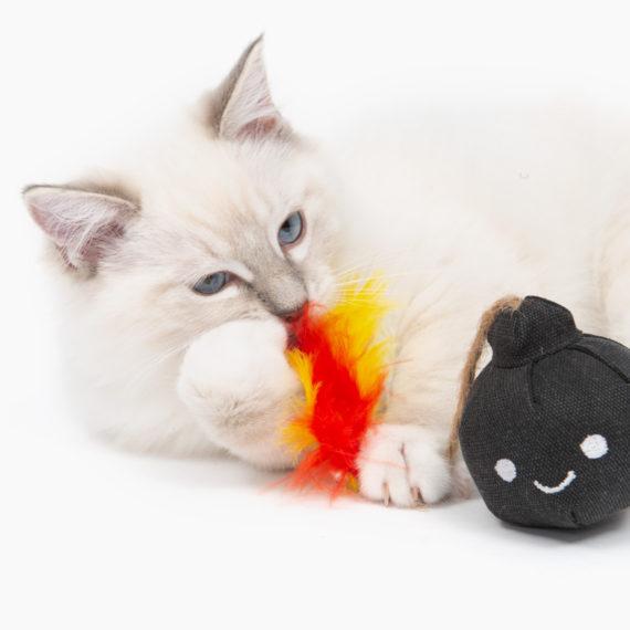 Pirates - Catnip Toy - Bomb B