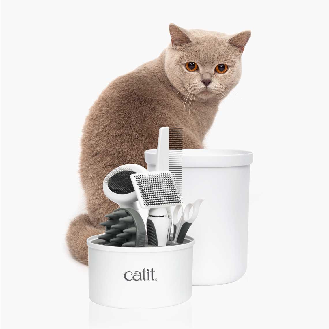Trousse de toilettage pour chats à poil court
