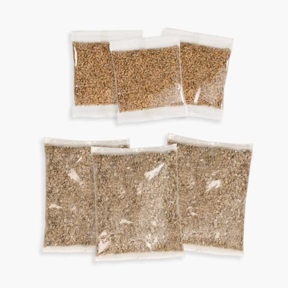 43162W - Senses 2.0 Cat Grass Kit