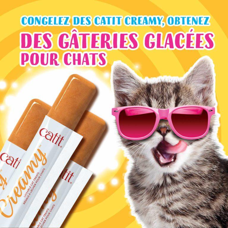 Congelez des Catit Creamy, obtenez des gâteries glacées pour chats
