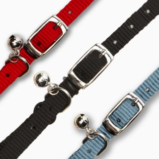 V55281 - Nylon Collar