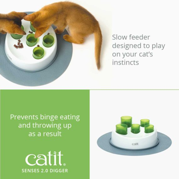 Senses 2.0 Digger is a slow feeder designed to play on you cat's instincts and prevents binge eating and throwing up as a result