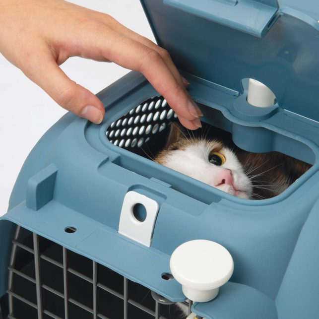 The Catit Carrier has a petting door