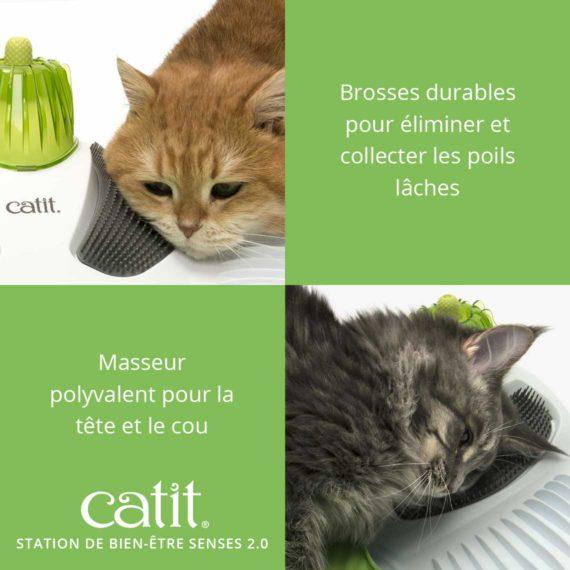 Station de Bien Être Senses 2.0 Catit – Brosses durables pour éliminer et collecter les poils laches. Masseur polyvalent pour la tête et le cou