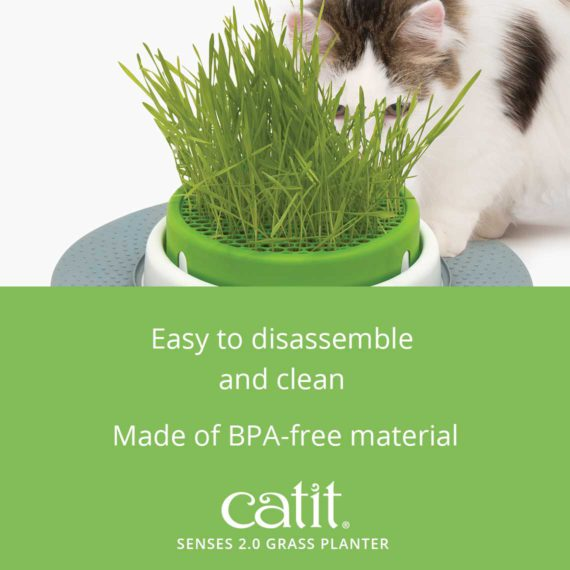 Senses 2.0 Grass Planter is easy to disassemble and clean and is made of BPA-free material