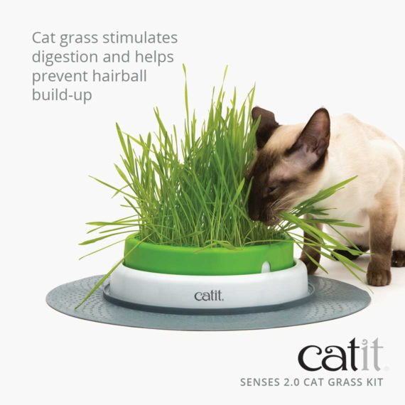 Senses 2.0 Cat Grass Kit stimulates digestion and helps prevent hairball build-up