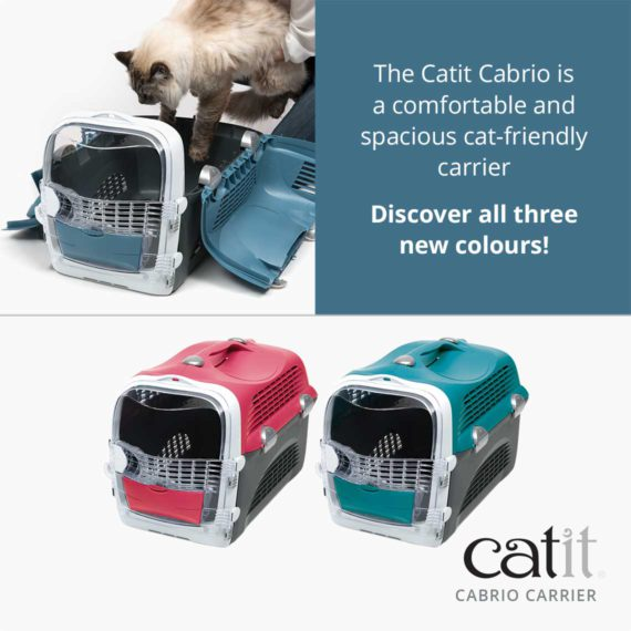 Catit Cabrio Carrier is a comfortable and spacious cat-friendly carrier. Discover all three new colours!