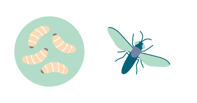 Catit Nuna - Sustainable & clean