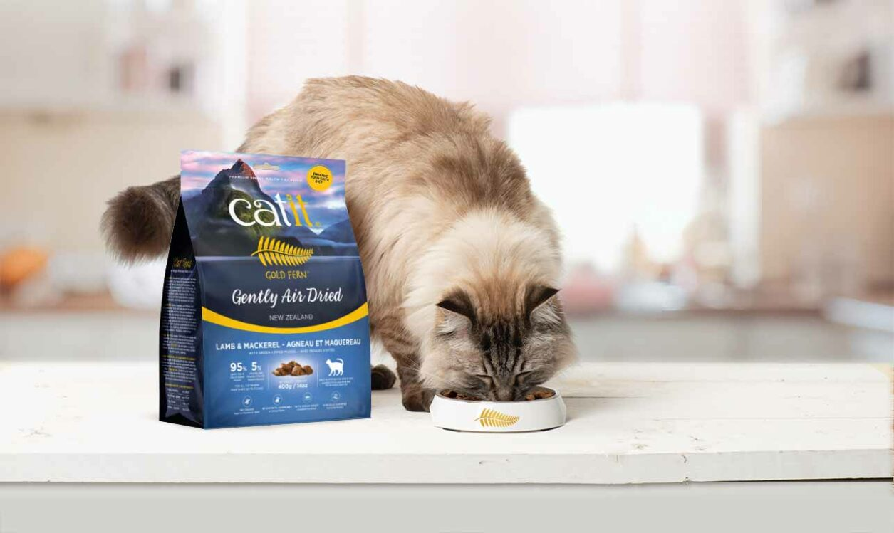 Gold Fern - Enhance your cat's diet - Cat eating food
