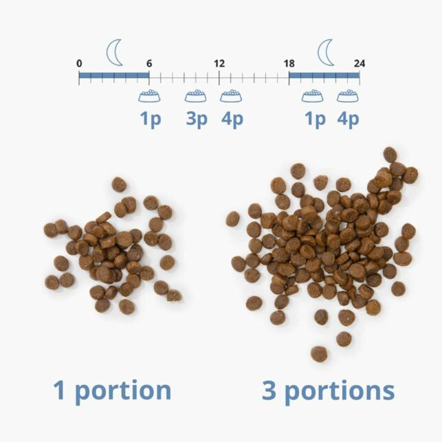 Set the number of portions for each meal
